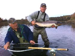 Andrew Moy, Towaco NJ, Main River Salmon